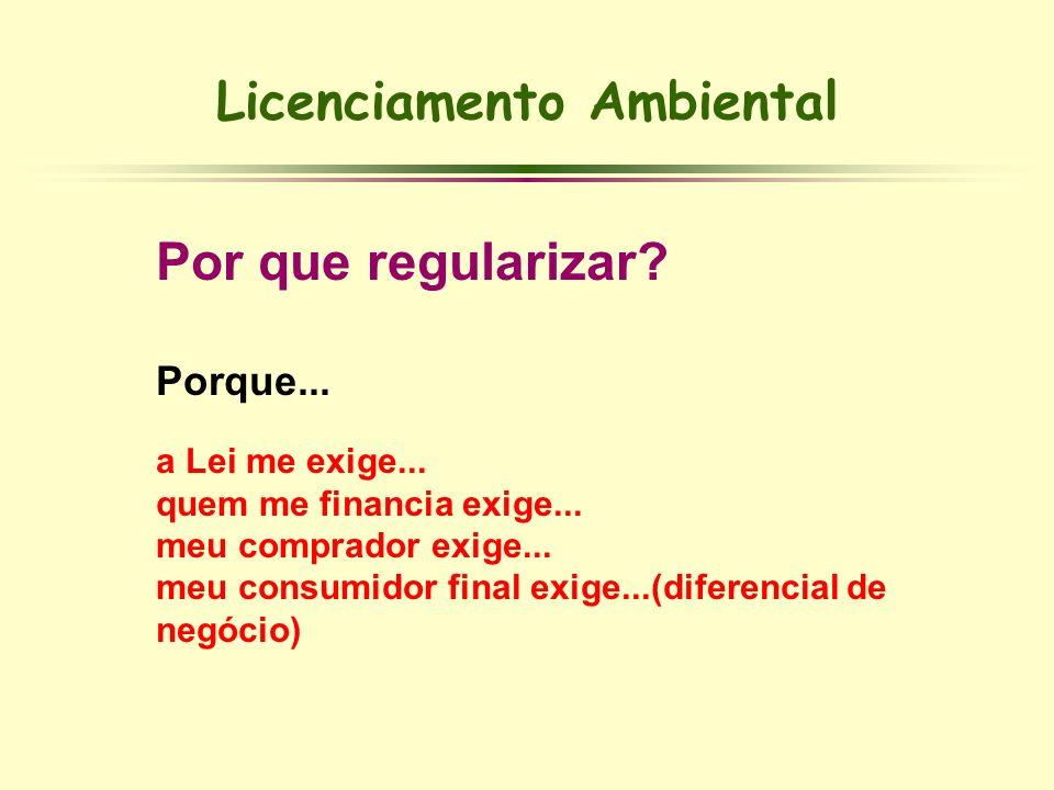 Licenciamento Ambiental Por que regularizar? Porque... a Lei me exige... quem me financia exige... meu comprador exige... meu consumidor final exige..