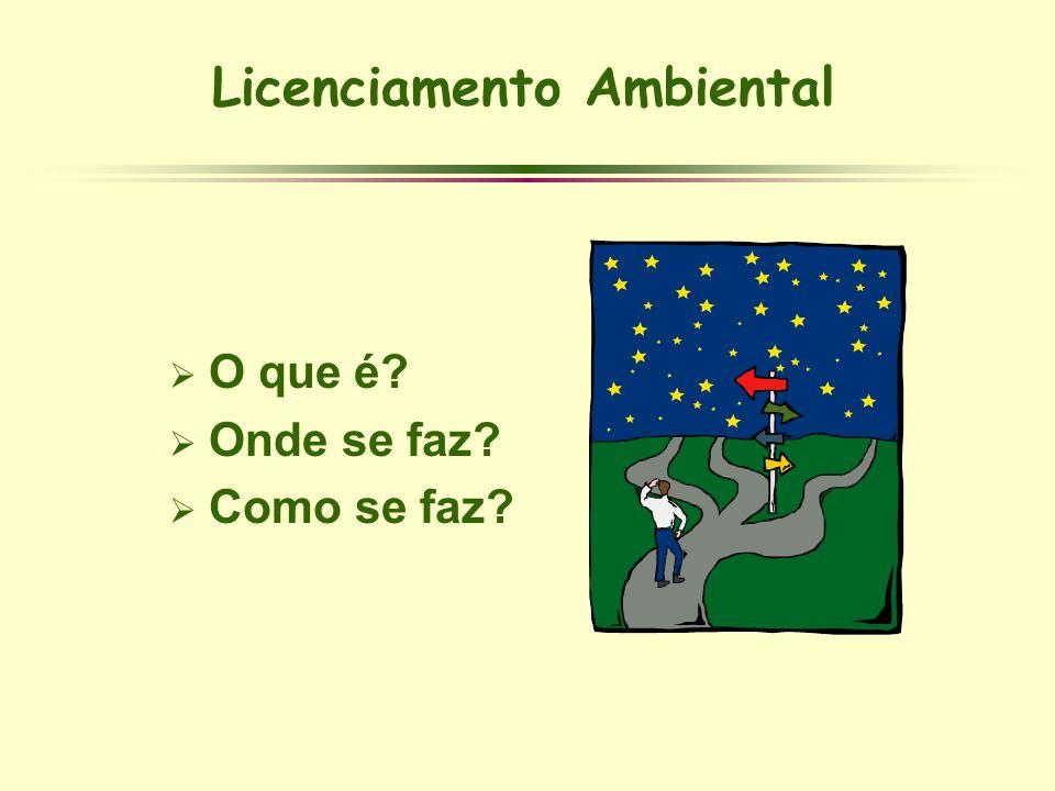 Licenciamento Ambiental O que é? Onde se faz? Como se faz?