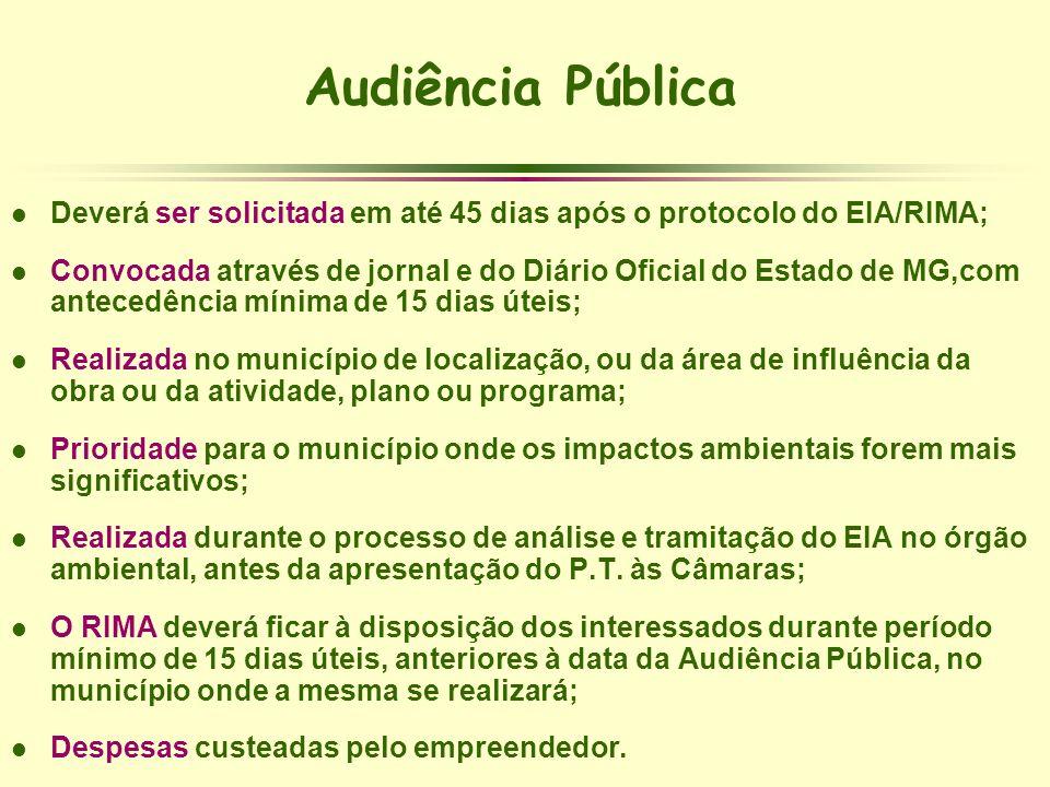 Audiência Pública l Deverá ser solicitada em até 45 dias após o protocolo do EIA/RIMA; l Convocada através de jornal e do Diário Oficial do Estado de