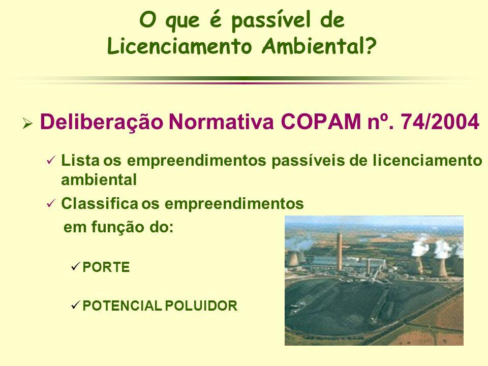 O que é passível de Licenciamento Ambiental? Deliberação Normativa COPAM nº. 74/2004 Lista os empreendimentos passíveis de licenciamento ambiental Cla