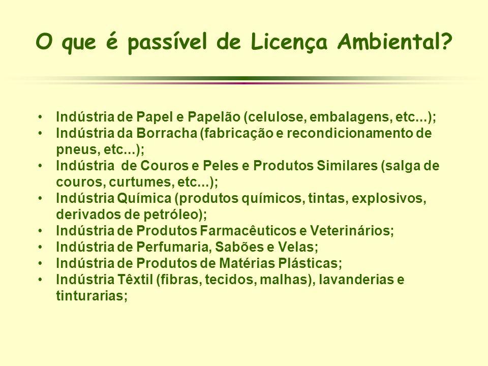 O que é passível de Licença Ambiental? Indústria de Papel e Papelão (celulose, embalagens, etc...); Indústria da Borracha (fabricação e recondicioname