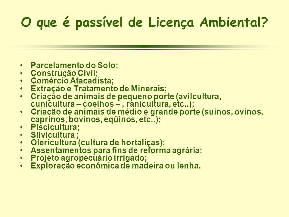 O que é passível de Licença Ambiental? Parcelamento do Solo; Construção Civil; Comércio Atacadista; Extração e Tratamento de Minerais; Criação de anim