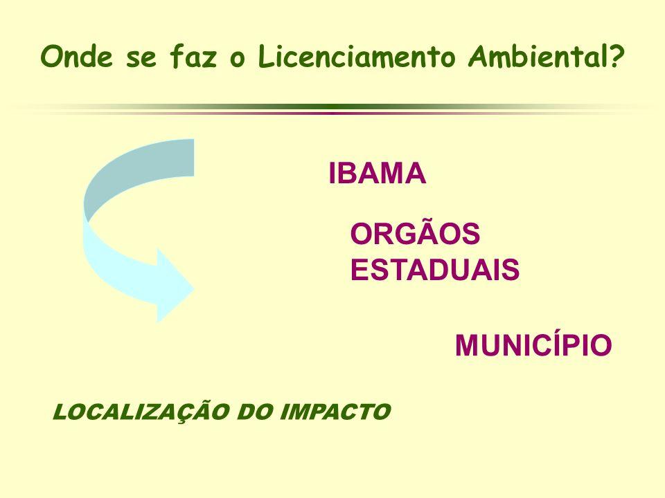 Onde se faz o Licenciamento Ambiental? IBAMA ORGÃOS ESTADUAIS LOCALIZAÇÃO DO IMPACTO MUNICÍPIO