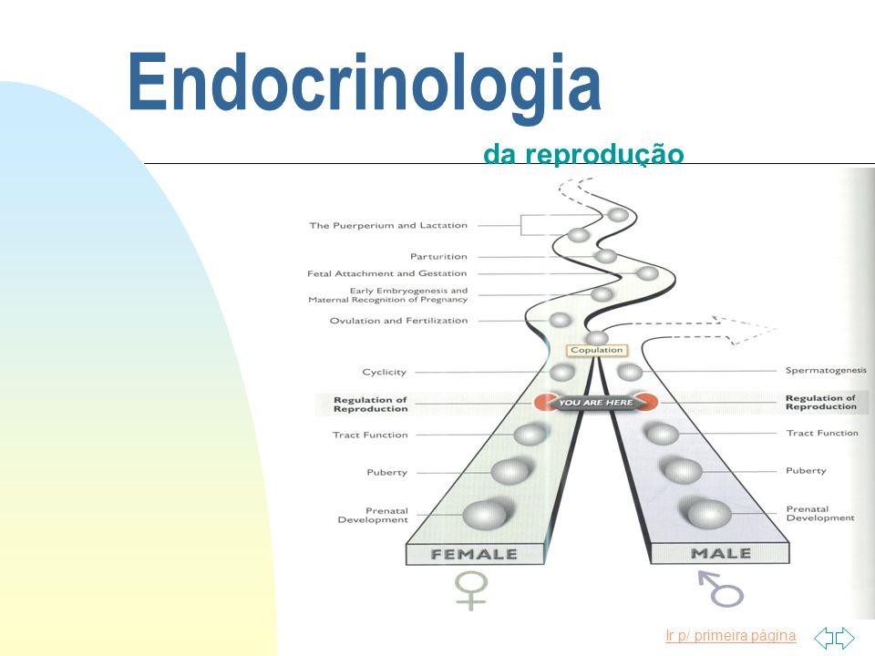 Ir p/ primeira página Endocrinologia da reprodução