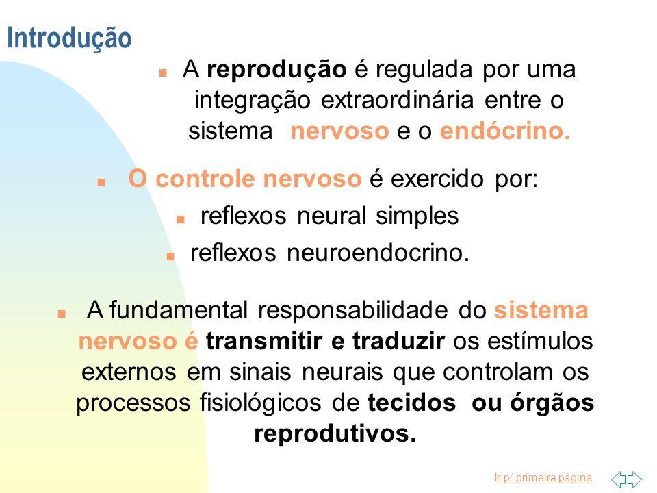 Ir p/ primeira página Introdução n A reprodução é regulada por uma integração extraordinária entre o sistema nervoso e o endócrino. n O controle nervo