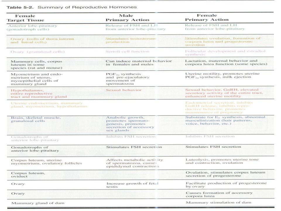 Endocrinologia n da reprodução Endocrinologia n da reprodução