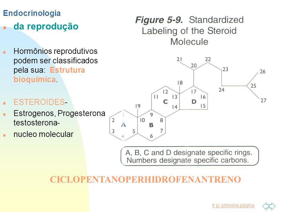 Ir p/ primeira página n da reprodução Endocrinologia n Hormônios reprodutivos podem ser classificados pela sua: Estrutura bioquímica. n ESTEROIDES- n