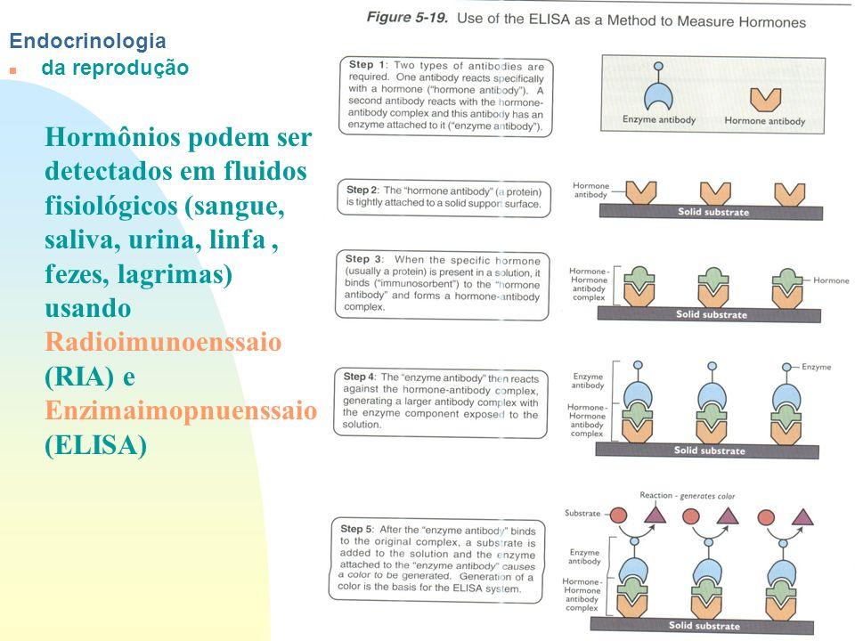 Ir p/ primeira página Endocrinologia n da reprodução Hormônios podem ser detectados em fluidos fisiológicos (sangue, saliva, urina, linfa, fezes, lagr