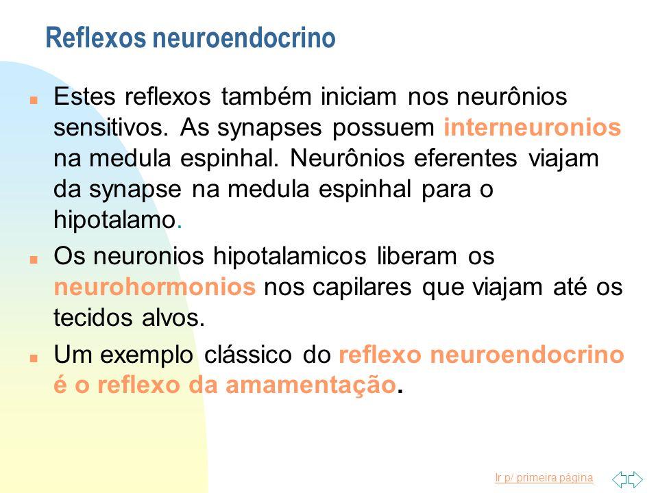 Ir p/ primeira página Reflexos neuroendocrino n Estes reflexos também iniciam nos neurônios sensitivos. As synapses possuem interneuronios na medula e