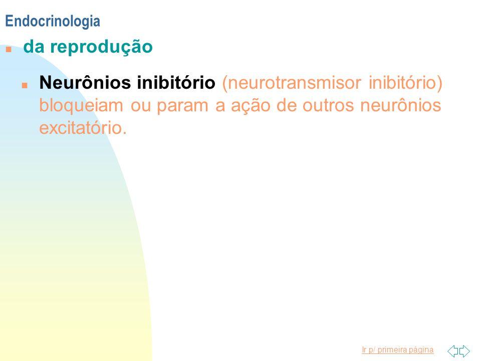 n Neurônios inibitório (neurotransmisor inibitório) bloqueiam ou param a ação de outros neurônios excitatório. Endocrinologia n da reprodução