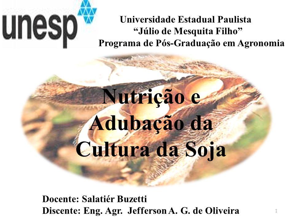 Universidade Estadual Paulista Júlio de Mesquita Filho Programa de Pós-Graduação em Agronomia Docente: Salatiér Buzetti Discente: Eng. Agr. Jefferson