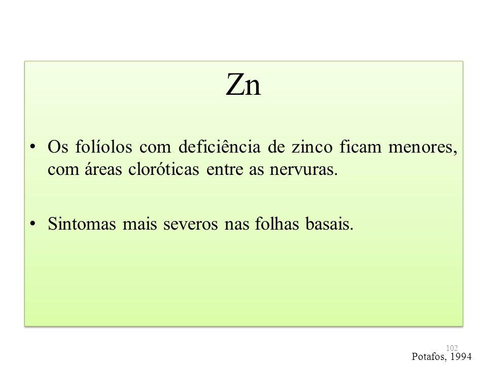Zn Os folíolos com deficiência de zinco ficam menores, com áreas cloróticas entre as nervuras. Sintomas mais severos nas folhas basais. Zn Os folíolos