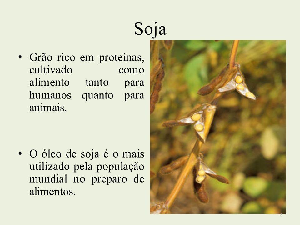 Soja Grão rico em proteínas, cultivado como alimento tanto para humanos quanto para animais. O óleo de soja é o mais utilizado pela população mundial