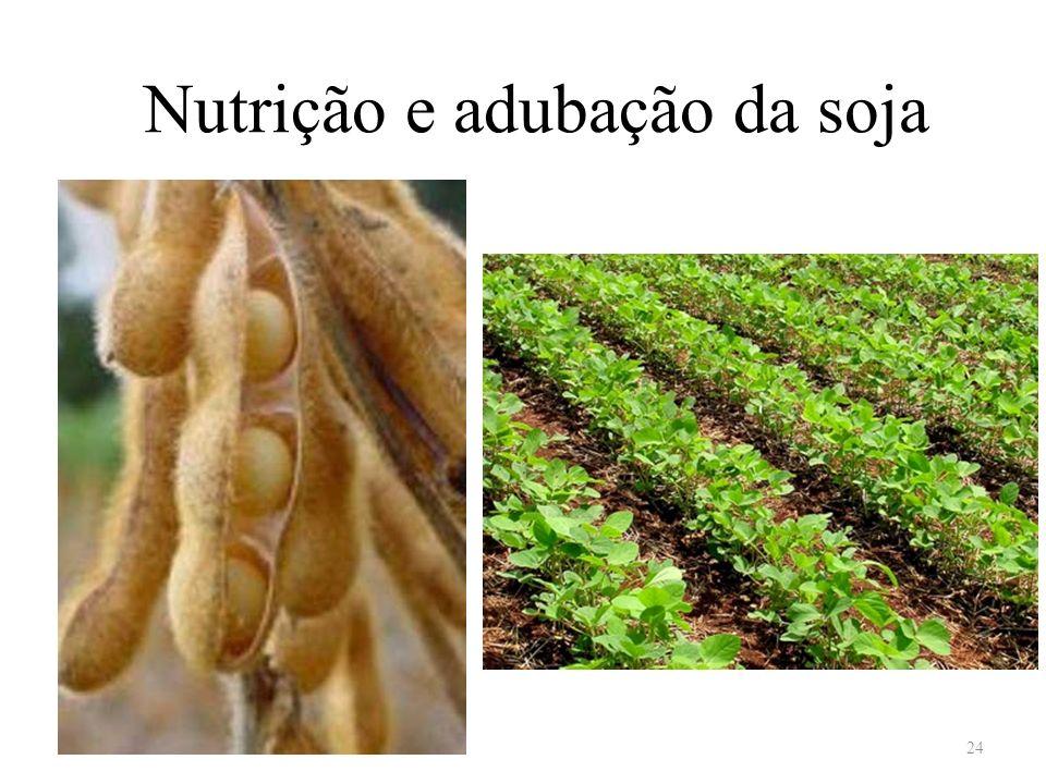 Nutrição e adubação da soja 24