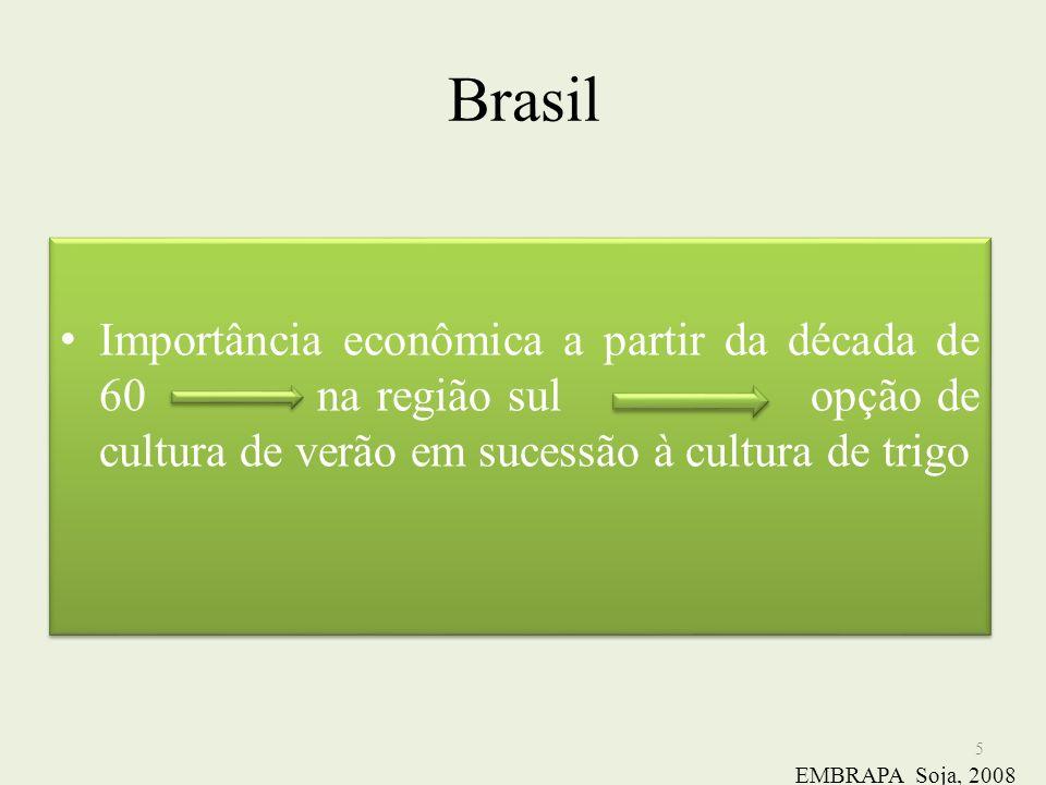 Brasil Importância econômica a partir da década de 60 na região sul opção de cultura de verão em sucessão à cultura de trigo 5 EMBRAPA Soja, 2008