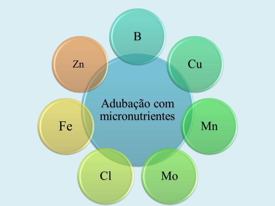 Adubação com micronutrientes BCuMnMoCl Fe Zn