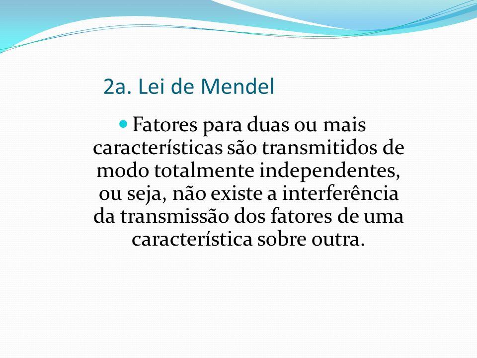 2a. Lei de Mendel Fatores para duas ou mais características são transmitidos de modo totalmente independentes, ou seja, não existe a interferência da