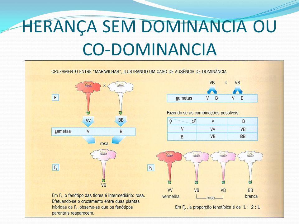 Promove-se a multiplicação das probabilidades dos acontecimentos isolados.