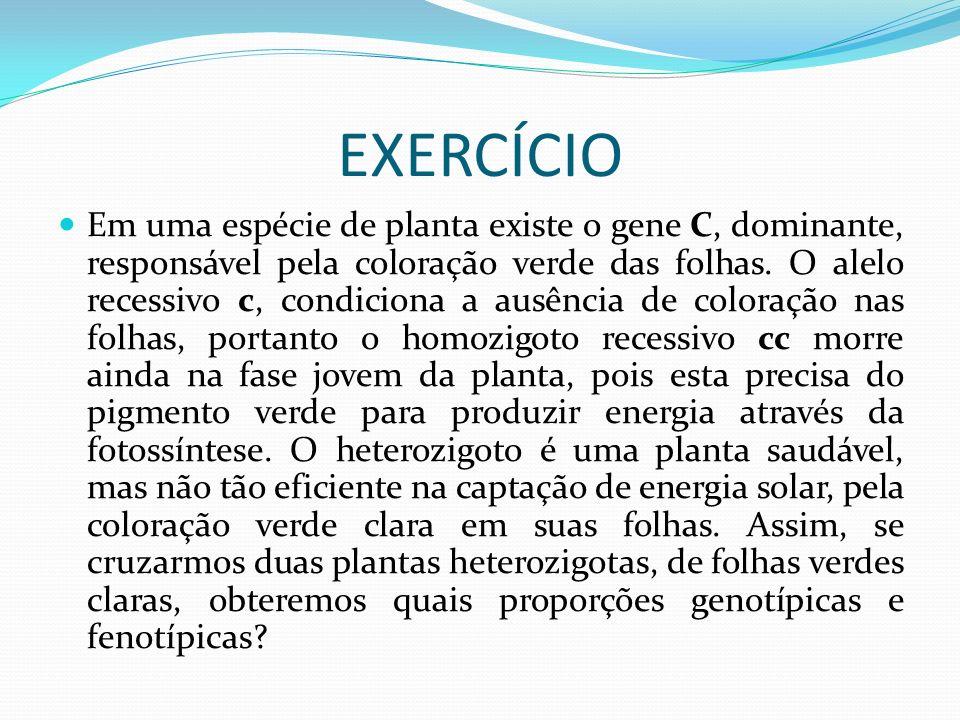 Exercicios: 2ª lei e probabilidades Em ervilha, o gene que determina a forma lisa da vagem (C) é dominante sobre o gene que determina vagens com constrições (c).