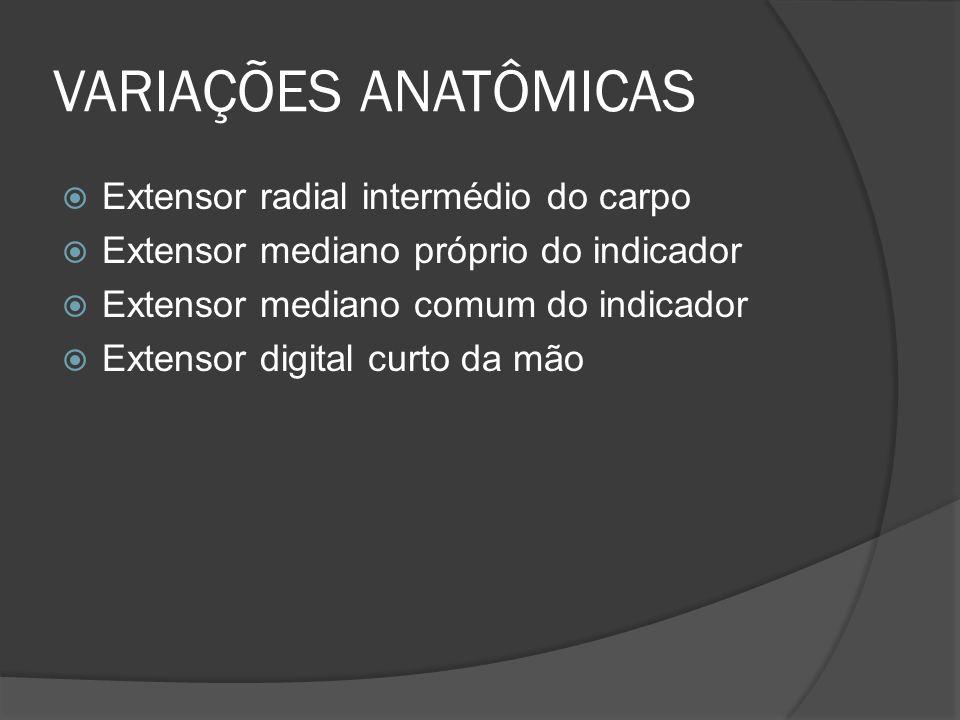 VARIAÇÕES ANATÔMICAS Extensor radial intermédio do carpo Extensor mediano próprio do indicador Extensor mediano comum do indicador Extensor digital cu