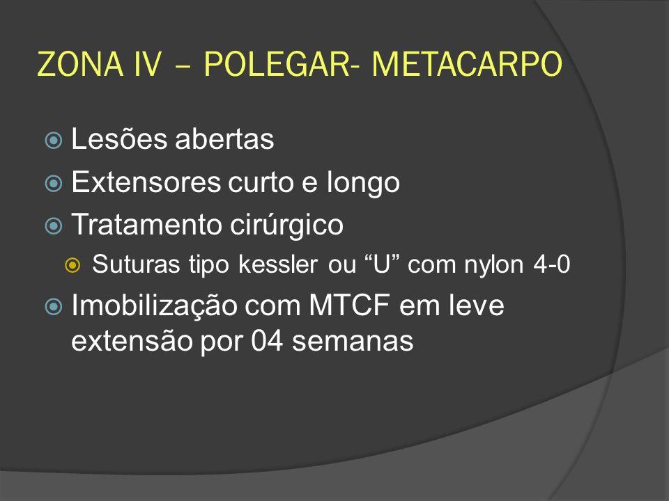 ZONA IV – POLEGAR- METACARPO Lesões abertas Extensores curto e longo Tratamento cirúrgico Suturas tipo kessler ou U com nylon 4-0 Imobilização com MTC