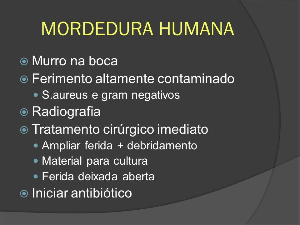 MORDEDURA HUMANA Murro na boca Ferimento altamente contaminado S.aureus e gram negativos Radiografia Tratamento cirúrgico imediato Ampliar ferida + de