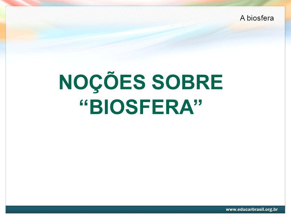 NOÇÕES SOBRE BIOSFERA A biosfera