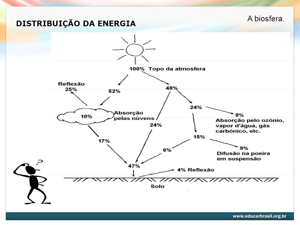 DISTRIBUIÇÃO DA ENERGIA A biosfera.
