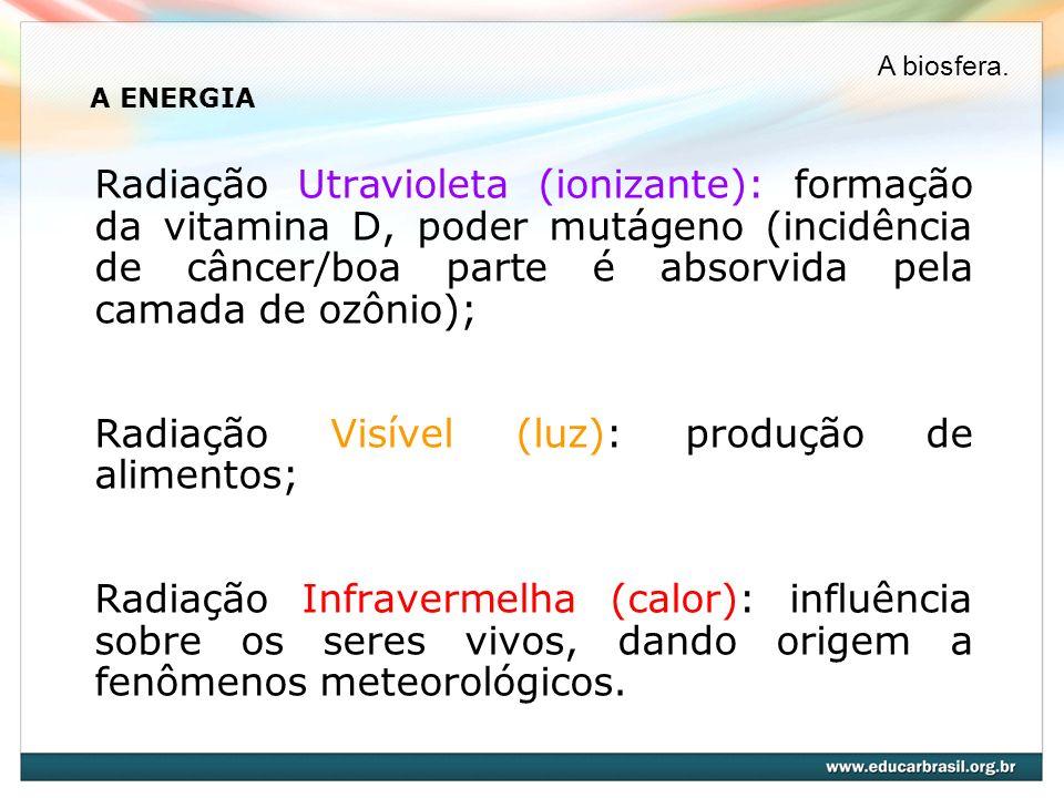 A ENERGIA Radiação Utravioleta (ionizante): formação da vitamina D, poder mutágeno (incidência de câncer/boa parte é absorvida pela camada de ozônio);