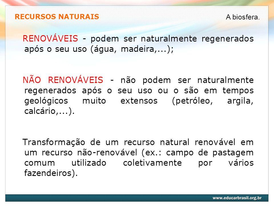 RECURSOS NATURAIS RENOVÁVEIS - podem ser naturalmente regenerados após o seu uso (água, madeira,...); NÃO RENOVÁVEIS - não podem ser naturalmente rege