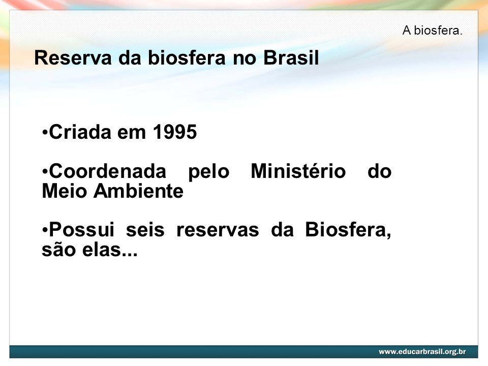 Reserva da biosfera no Brasil Criada em 1995 Coordenada pelo Ministério do Meio Ambiente Possui seis reservas da Biosfera, são elas... A biosfera.