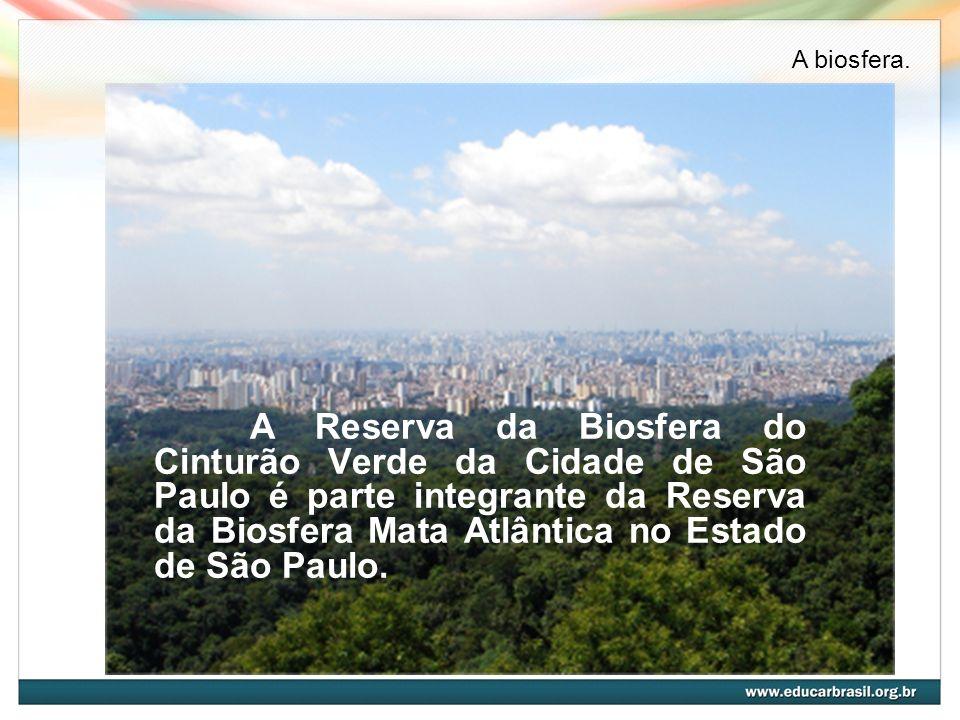 A Reserva da Biosfera do Cinturão Verde da Cidade de São Paulo é parte integrante da Reserva da Biosfera Mata Atlântica no Estado de São Paulo. A bios