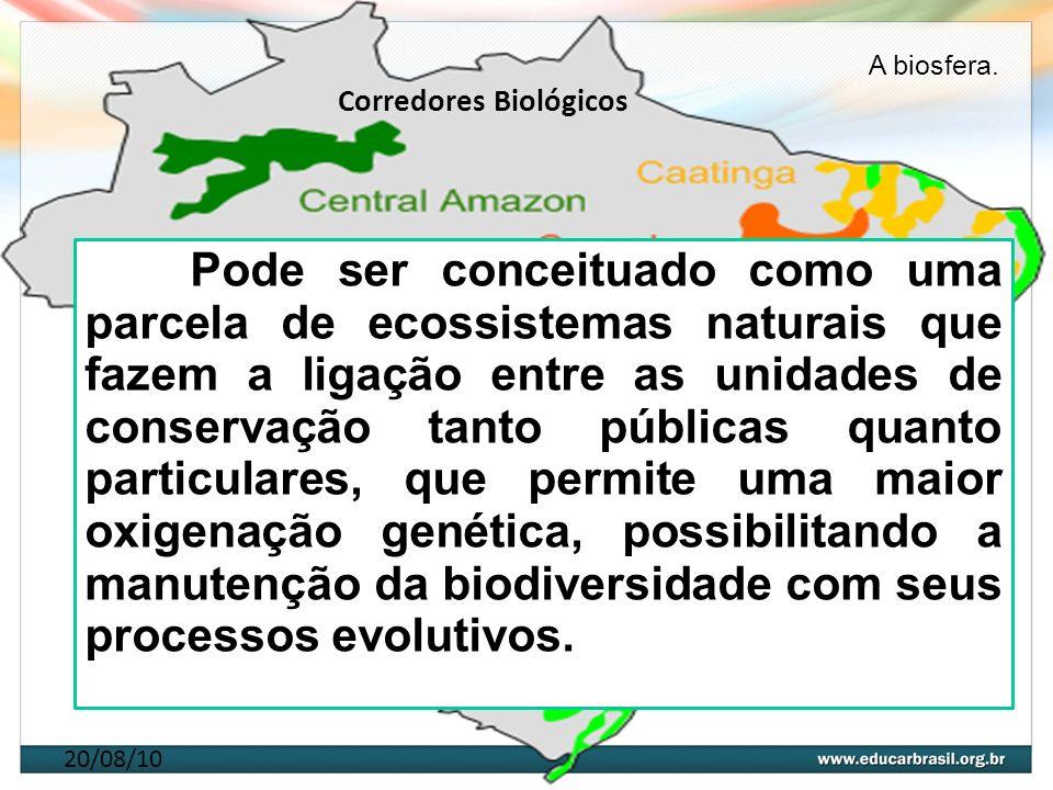 20/08/10 Corredores Biológicos Pode ser conceituado como uma parcela de ecossistemas naturais que fazem a ligação entre as unidades de conservação tan