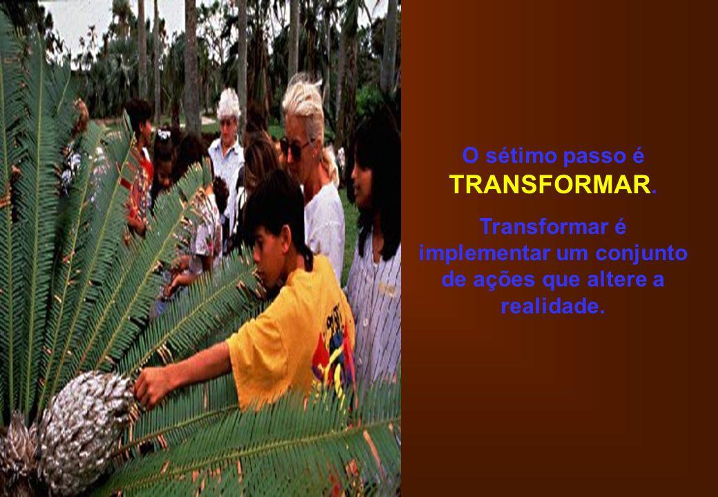 O sétimo passo é TRANSFORMAR. Transformar é implementar um conjunto de ações que altere a realidade.