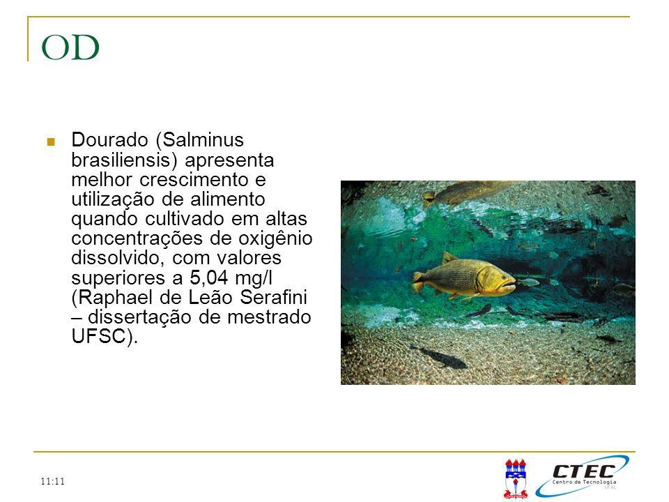 11:11 OD Dourado (Salminus brasiliensis) apresenta melhor crescimento e utilização de alimento quando cultivado em altas concentrações de oxigênio dis