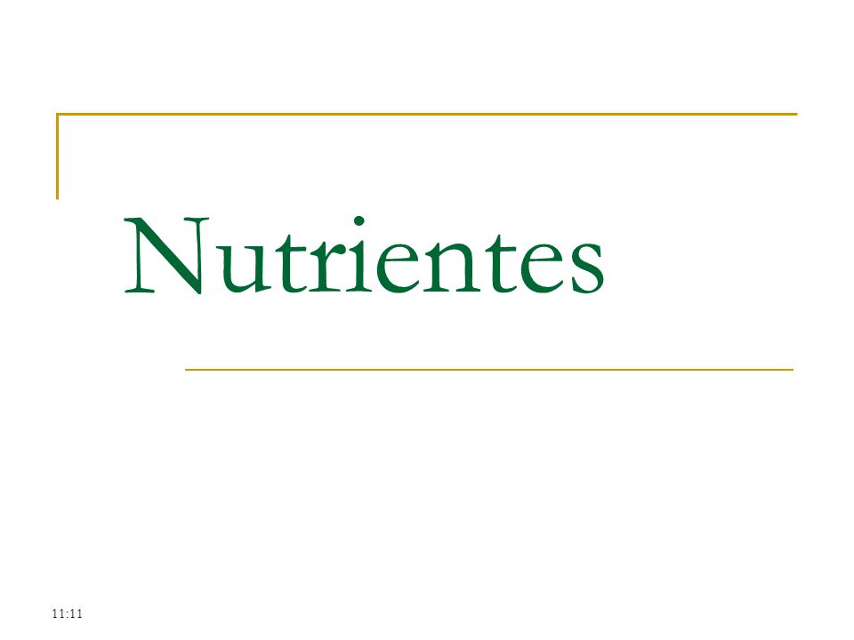 11:11 Nutrientes