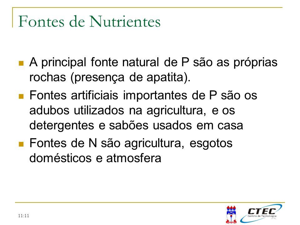 11:11 Fontes de Nutrientes A principal fonte natural de P são as próprias rochas (presença de apatita). Fontes artificiais importantes de P são os adu