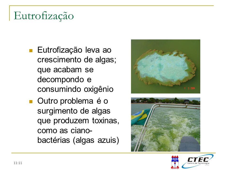 11:11 Eutrofização Eutrofização leva ao crescimento de algas; que acabam se decompondo e consumindo oxigênio Outro problema é o surgimento de algas qu