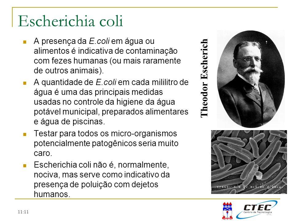 11:11 Escherichia coli A presença da E.coli em água ou alimentos é indicativa de contaminação com fezes humanas (ou mais raramente de outros animais).