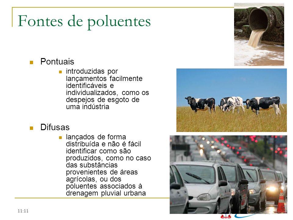 11:11 Fontes de poluentes Pontuais introduzidas por lançamentos facilmente identificáveis e individualizados, como os despejos de esgoto de uma indúst