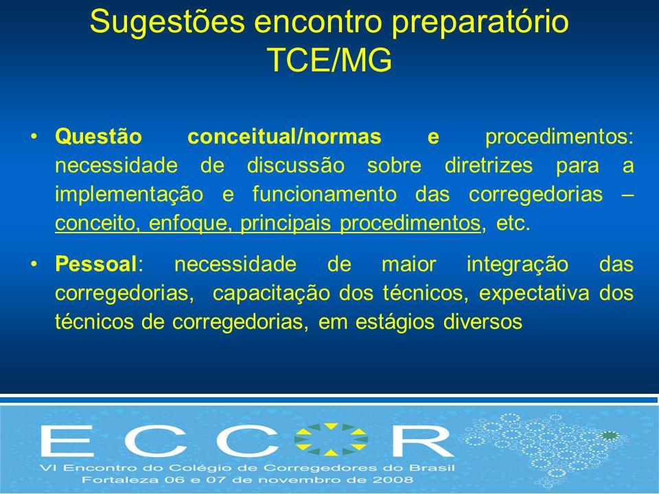 Sugestões encontro preparatório TCE/MG Questão conceitual/normas e procedimentos: necessidade de discussão sobre diretrizes para a implementação e fun
