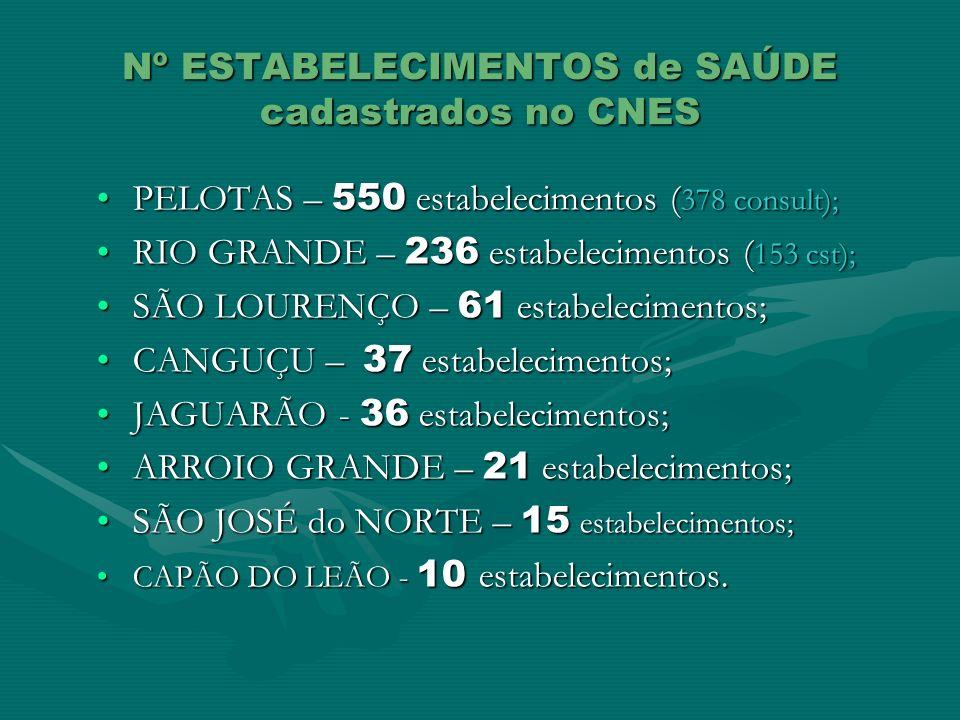 Nº ESTABELECIMENTOS de SAÚDE cadastrados no CNES PELOTAS – 550 estabelecimentos ( 378 consult);PELOTAS – 550 estabelecimentos ( 378 consult); RIO GRAN