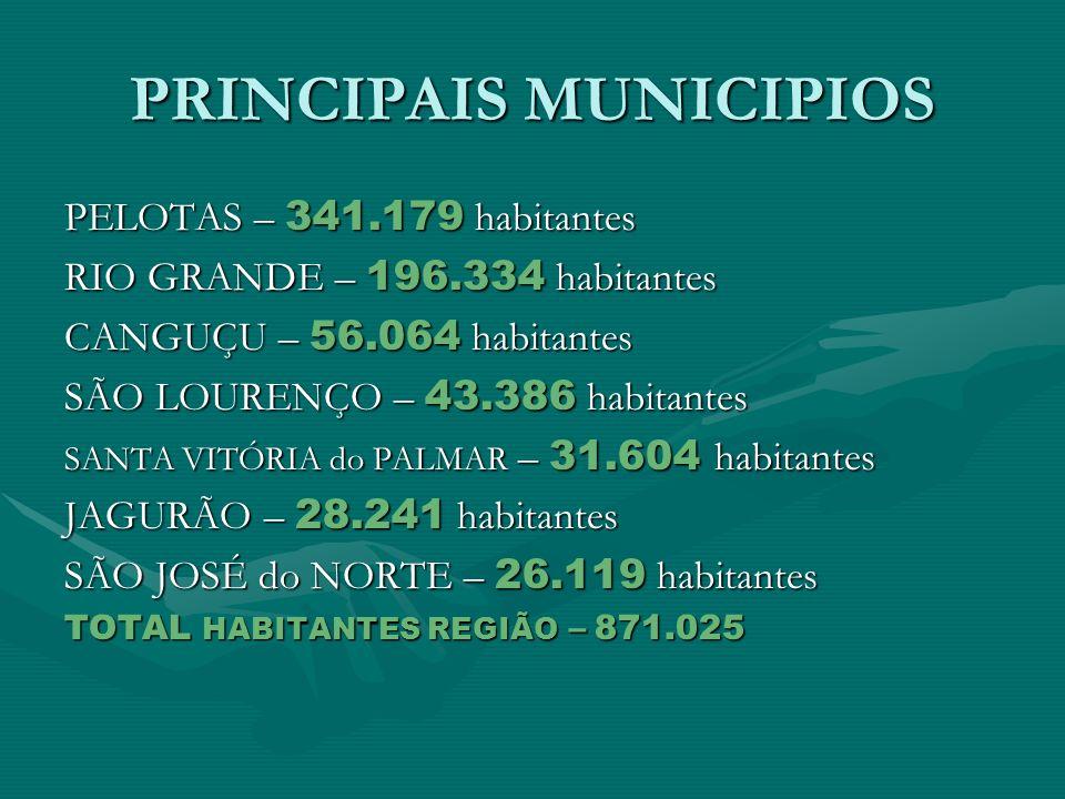 PRINCIPAIS MUNICIPIOS PELOTAS – 341.179 habitantes RIO GRANDE – 196.334 habitantes CANGUÇU – 56.064 habitantes SÃO LOURENÇO – 43.386 habitantes SANTA