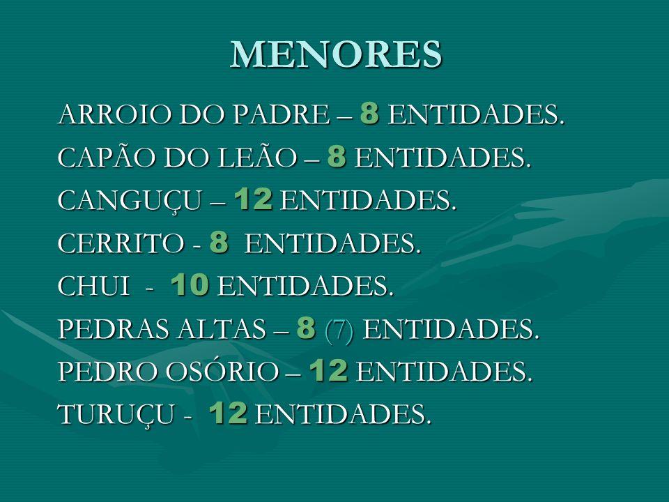 MENORES ARROIO DO PADRE – 8 ENTIDADES. CAPÃO DO LEÃO – 8 ENTIDADES. CANGUÇU – 12 ENTIDADES. CERRITO - 8 ENTIDADES. CHUI - 10 ENTIDADES. PEDRAS ALTAS –