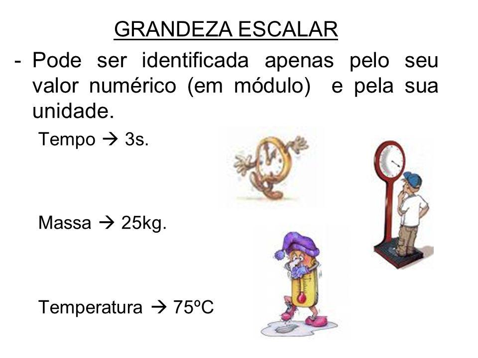 GRANDEZA ESCALAR -Pode ser identificada apenas pelo seu valor numérico (em módulo) e pela sua unidade. Tempo 3s. Massa 25kg. Temperatura 75ºC