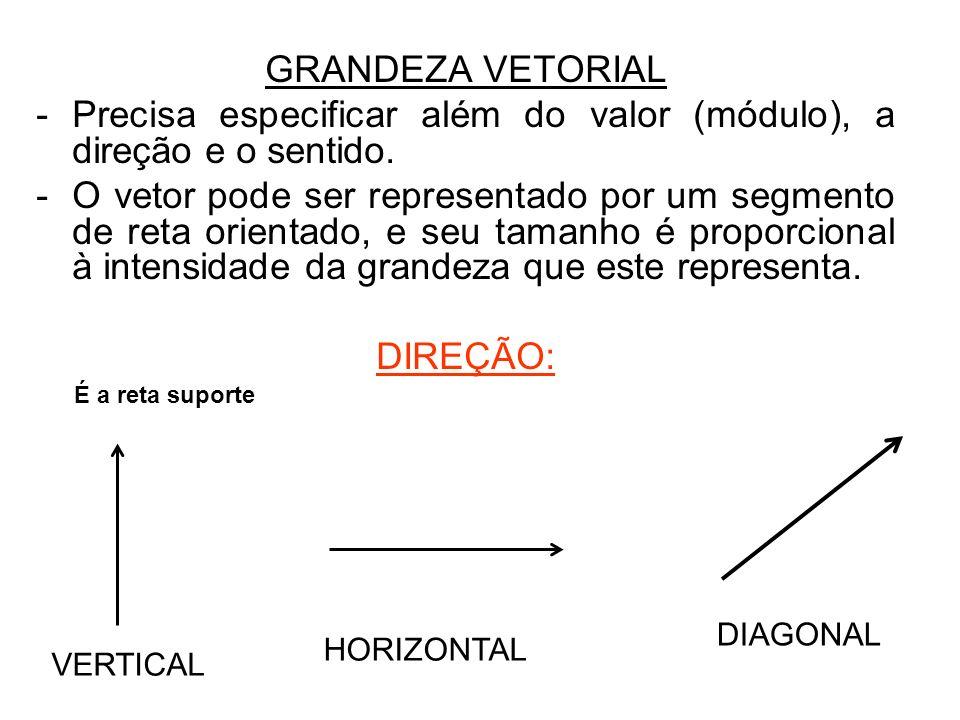 GRANDEZA VETORIAL -Precisa especificar além do valor (módulo), a direção e o sentido. -O vetor pode ser representado por um segmento de reta orientado