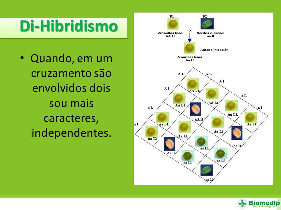 Di-Hibridismo Quando, em um cruzamento são envolvidos dois sou mais caracteres, independentes.