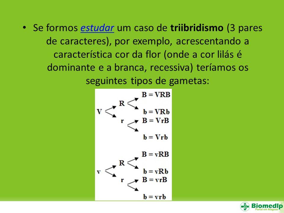 Se formos estudar um caso de triibridismo (3 pares de caracteres), por exemplo, acrescentando a característica cor da flor (onde a cor lilás é dominan