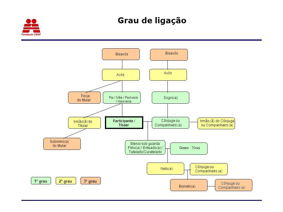 Participante / Titular Neto(a) Genro / Nora Sobrinho(a) do titular Cônjuge ou Companheiro (a) Bisneto(a) Irmão(ã) do Titular Irmão (ã) do Cônjuge ou C