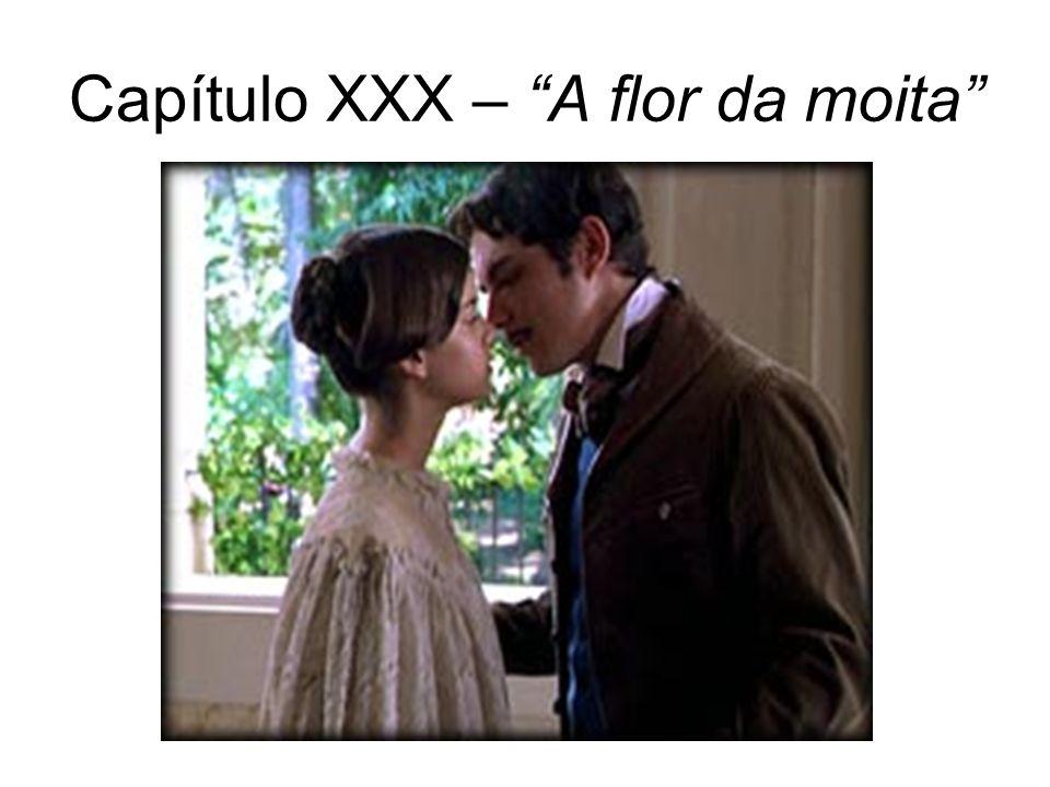 Capítulo XXX – A flor da moita